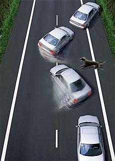 Поведение автомобиля при экстренном торможении без ABS