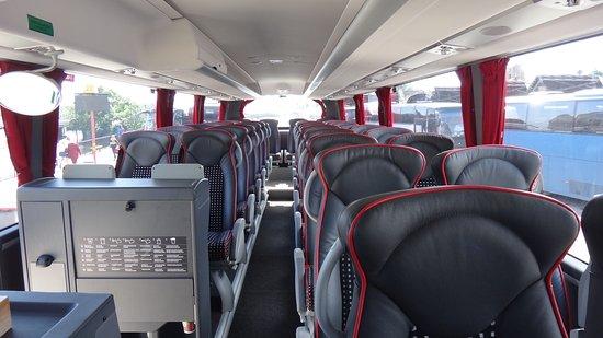Правила перевозки детей автобусом